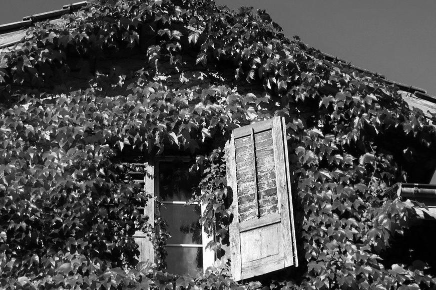 Aménagement de combles à Le Perreux-sur-Marne 94170 | Isolation sous toiture