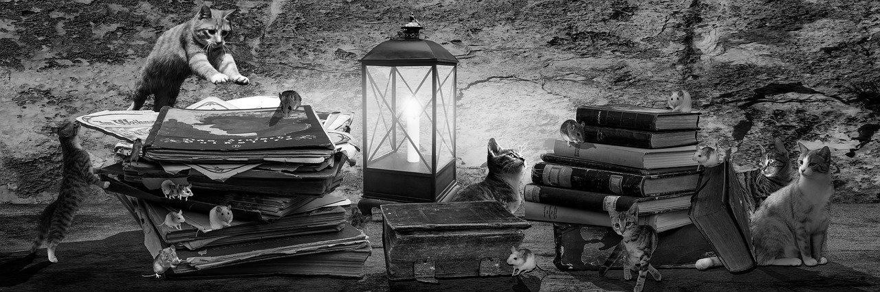 Aménagement de combles à L'Isle-d'Abeau 38080 | Isolation sous toiture