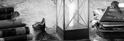 Aménagement de combles à Pernes-les-Fontaines 84210 | Isolation sous toiture