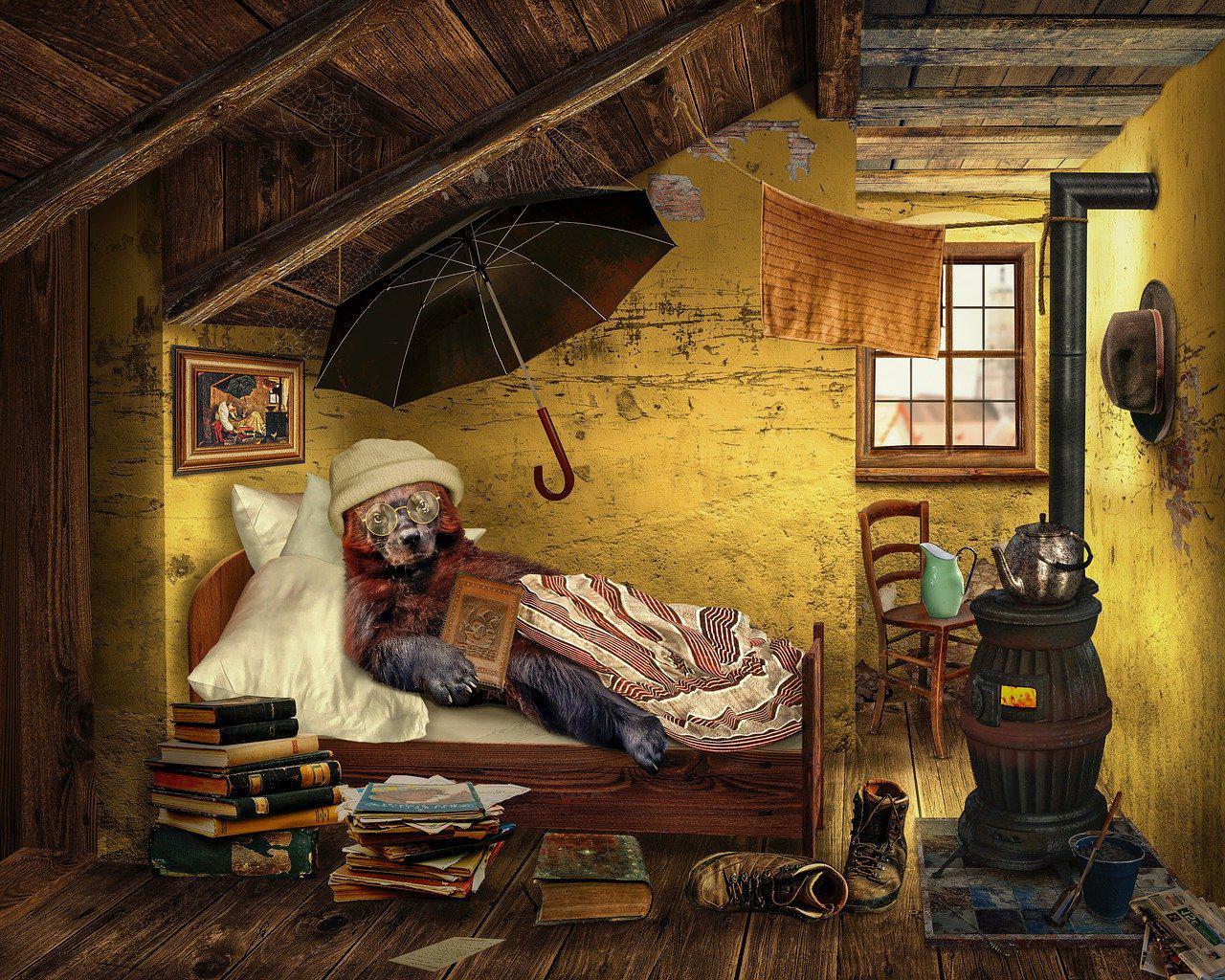 Aménagement de combles à Rivière-Salée 97215 | Isolation sous toiture