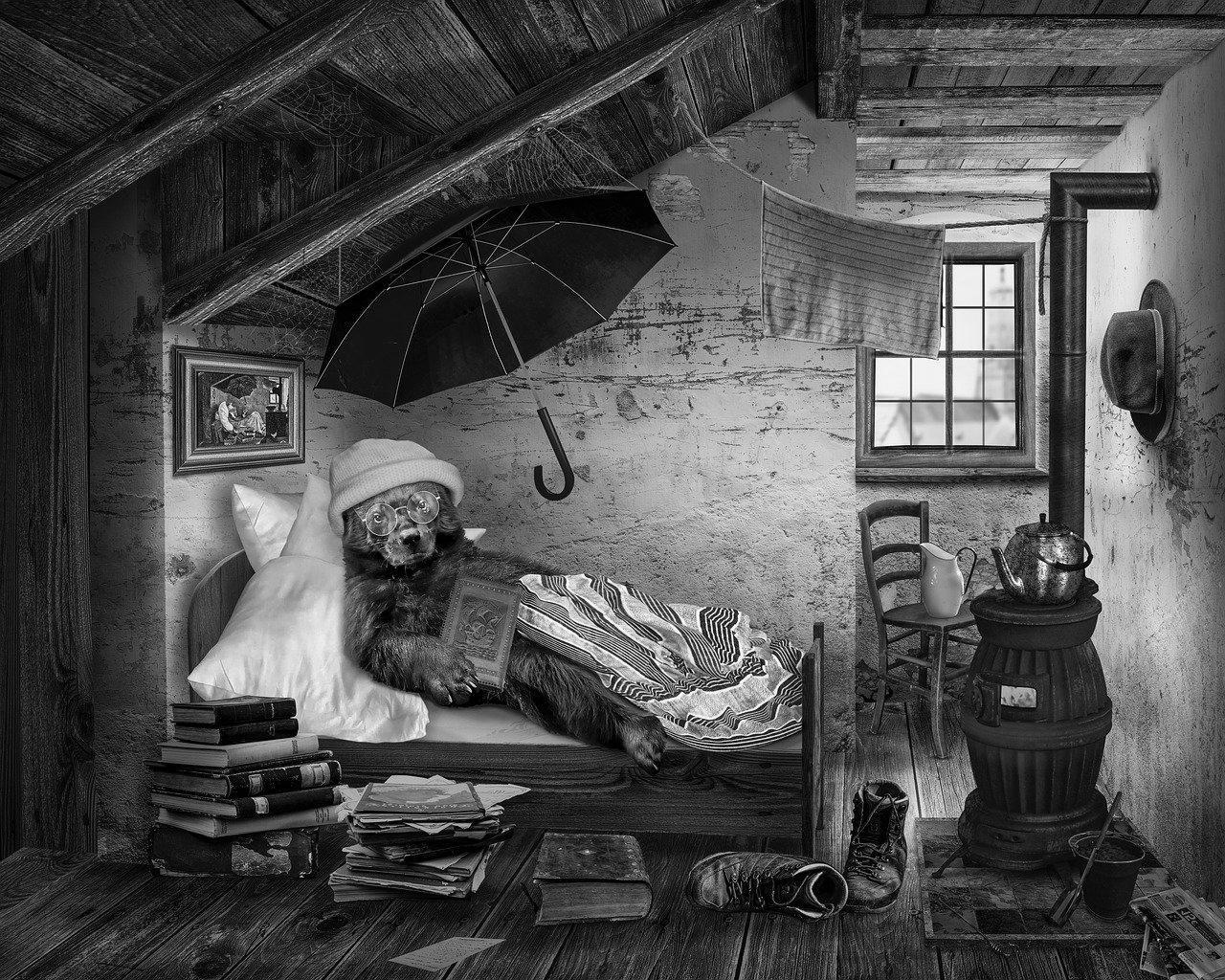 Aménagement de combles à Saint-Amand-Montrond 18200   Isolation sous toiture